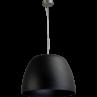 Hanglamp Ogivia Black Masterlight 2050-05-ST